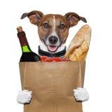 Pomodori del vino del cane del sacchetto di drogheria immagini stock