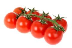 Pomodori dell'insalata della vite Fotografia Stock Libera da Diritti