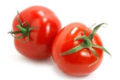 Pomodori dell'isolato Immagine Stock