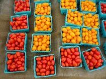 Pomodori dell'uva Fotografie Stock Libere da Diritti