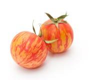 Pomodori della zebra fotografie stock libere da diritti