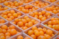 Pomodori di ciliegia arancioni fotografia stock libera da diritti