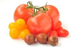 Pomodori di ciliegia dei colori differenti Immagine Stock