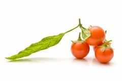 Pomodori di ciliegia impilati Fotografie Stock