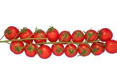 Pomodori di ciliegia isolati Fotografia Stock