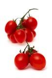 Pomodori di ciliegia maturi freschi Fotografia Stock