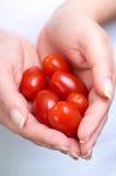 Pomodori di ciliegia nelle mani fotografia stock
