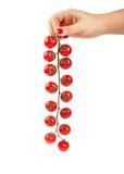 Pomodori di ciliegia rossi freschi Immagine Stock