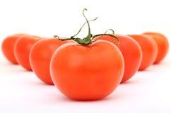 Pomodori di ciliegia rossi sani con il gambo verde Fotografie Stock