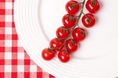 Pomodori di ciliegia sulla zolla Immagini Stock Libere da Diritti