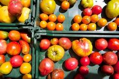 Pomodori di cimelio da vendere nel mercato dell'agricoltore dell'estate Fotografie Stock Libere da Diritti
