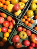 Pomodori di cimelio da vendere nel mercato dell'agricoltore dell'estate Fotografie Stock