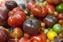 Pomodori di Heirloom. fotografia stock