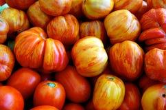 Pomodori di Heirloom immagini stock
