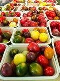 Pomodori di Heirloom Fotografia Stock Libera da Diritti