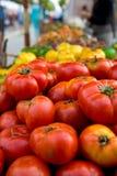 Pomodori di Heirloom al coltivatore immagine stock
