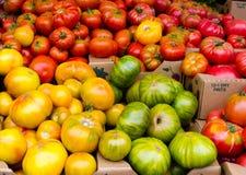 Pomodori di Heirloom su visualizzazione fotografia stock libera da diritti