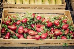 Pomodori di Herry nella scatola di legno Fotografia Stock Libera da Diritti