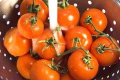 Pomodori di lavaggio vicino in su Fotografia Stock