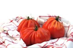 Pomodori di Oxheart fotografia stock libera da diritti
