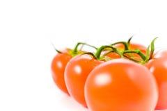 Pomodori di prospettiva Fotografia Stock Libera da Diritti