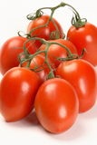 Pomodori di prugna della vite Immagine Stock