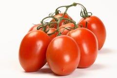 Pomodori di prugna della vite immagini stock