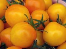 Pomodori di prugna gialli 3 Fotografie Stock