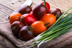Pomodori differenti organici di colore e cipolle verdi Fotografia Stock