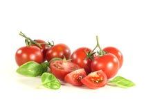 Pomodori e basilico Fotografie Stock Libere da Diritti