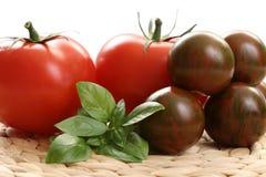 Pomodori e basilico fotografie stock