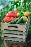 Pomodori e cetrioli freschi alle drogherie fotografie stock