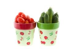 Pomodori e cetriolo in vaso di fioritura Fotografie Stock Libere da Diritti