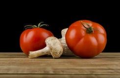 Pomodori e fungo Immagine Stock