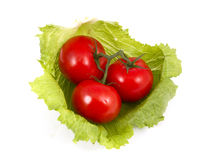 Pomodori e lattuga. Fotografia Stock Libera da Diritti