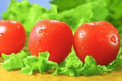 Pomodori e lattuga di ciliegia Fotografia Stock