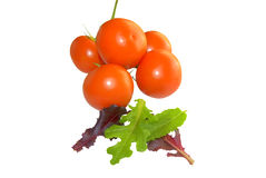 Pomodori e lattuga gastronomica Fotografia Stock Libera da Diritti