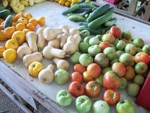 Pomodori e zucca verdi Fotografie Stock