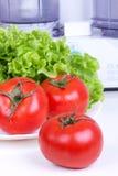 Pomodori ed azienda di trasformazione del foglio e della cucina dell'insalata Fotografie Stock