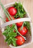 Pomodori ed erbe in un cestino Immagini Stock