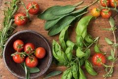 Pomodori ed erbe verdi fresche Immagine Stock