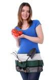 Pomodori femminili della holding del giardiniere Fotografie Stock