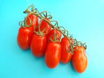 Pomodori freschi Fotografie Stock