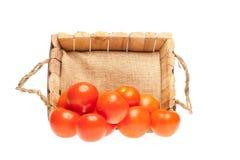 Pomodori freschi che escono da un cestino di legno Fotografia Stock