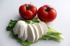 Pomodori freschi con i tagli verdi e formaggio affettato della mozzarella sulle foglie dell'insalata Fotografia Stock