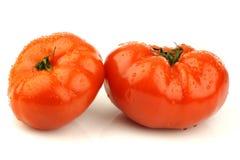 Pomodori freschi del manzo Fotografia Stock Libera da Diritti