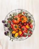 Pomodori freschi differenti in un canestro sulla vista superiore del fondo di legno bianco fotografia stock