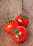 Pomodori freschi e maturi Fotografia Stock Libera da Diritti