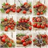 Pomodori freschi e secchi immagine stock libera da diritti