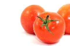 Pomodori freschi isolati su bianco Fotografia Stock Libera da Diritti